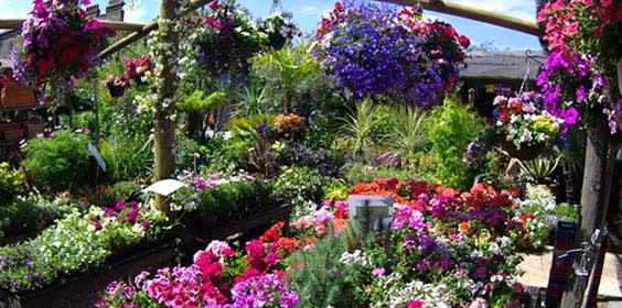 Garden centre deliveries